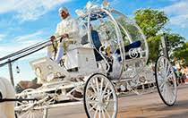 cinderella s coach transportation florida weddings wishes collection disney s