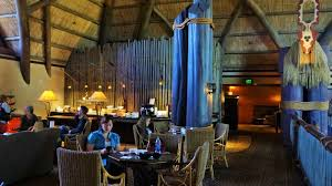 disney u0027s animal kingdom lodge kilimanjaro club level