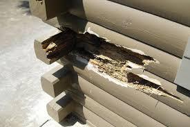 ironwood log home restoration u0026 finishing gallery cabin