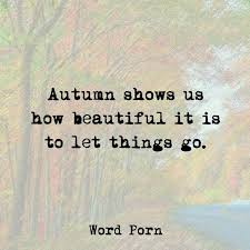 best 25 autumn quotes inspirational ideas on fall