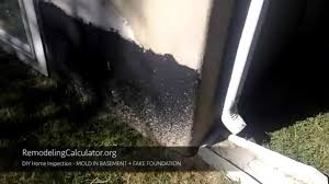 diy home inspection mold in basement fake foundation youtube