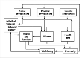 the need for an integrated biopsychosocial approach to research on
