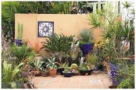 Patio Container Garden Ideas Potted Plant Ideas Home Decorations Spots