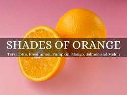 shades of orange colour meanings by bianca g