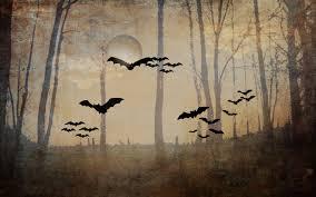 halloween backgrounds backgrounds photography photo