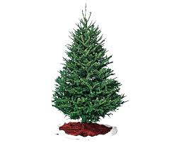 christmas tree delivery coopers trees christmas tree delivery portland oregon