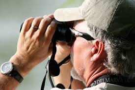 the best binoculars under 500 bird watcher u0027s digest