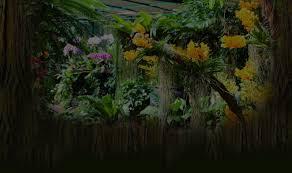 kerala home design moonnupeedika kerala pearlorchids