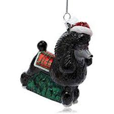 34 best poodle stuff images on standard poodles