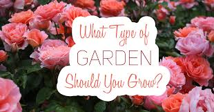 Types Of Garden Flowers What Type Of Garden Should You Grow Quiz Result