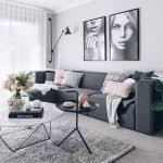 Pink Living Room Ideas Black Grey And Pink Living Room Ideas Awesome Imaginate Algo Asi