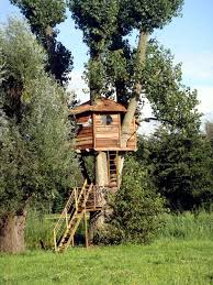 a tree house for children in garden construction useful tips and