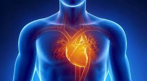 Heart Palpitations After Walking Up Stairs by How To Prevent Heart Attack U0026 Cardiac Arrest Lagos Cardiologist