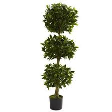 topiary artificial plants for less overstock
