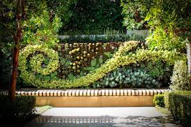 compound wall designs landscape contemporary with succulent plants