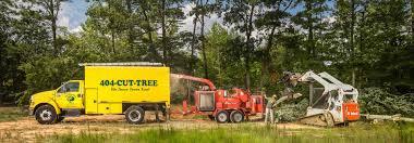 tree removal atlanta tree service in atlanta cheap tree