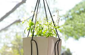 decor stimulating hanging plant pot holder favored hanging plant