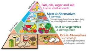 diet plan normal food u2013 diet plan