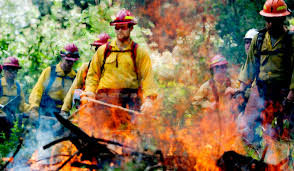 Wildfire Training by Balkan War Survivor Battling Wildfires To Give Back To U S The