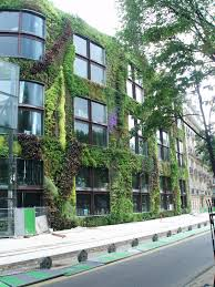 Vertical Garden Walls by Uprooted Gardener How To Build Your Own Living Wall Or Vertical