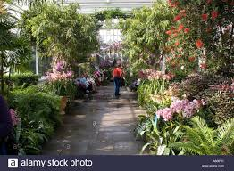 Nyc Botanical Gardens New York Botanical Gardens Orchid Show Nyc Usa Stock Photo