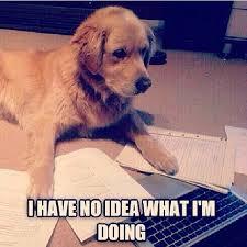 Pun Dog Meme - mathpics joke meme humor funny mathjoke mathmeme haha pun dog