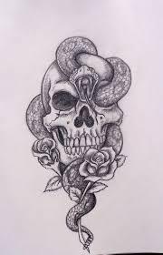 skull snake roses by davart11 d344o2q jpg 900 1 403 pixels