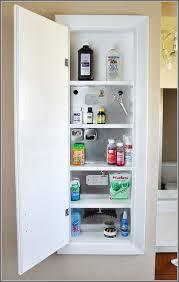 Medicine Cabinet Storage Medicine Cabinet Storage Ideas Home Design Ideas