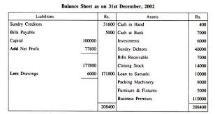 balance sheet meaning nature specimen and forms