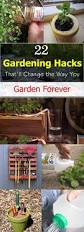 these 22 clever and easy gardening hacks are so useful that using