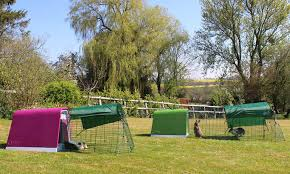 Guinea Pig Hutches And Runs For Sale Eglu Go Rabbit Hutch Plastic House And Run For Rabbits