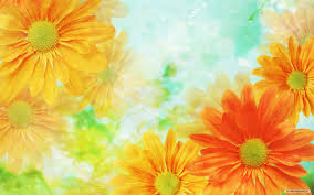 flowers background flower wallpaper images of flower 2 free