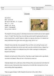 primaryleap co uk reading comprehension cheetah worksheet