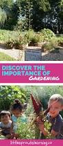 family gardening discover the importance of gardening little sprouts learning