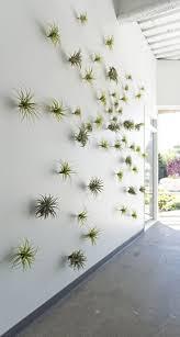 Interior Plant Wall 340 Best Green Living Walls Vertical Gardens Images On Pinterest