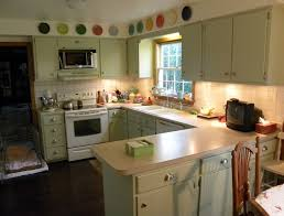 Concrete Kitchen Cabinets Green Kitchen Cabinets In Appealing Design For Modern Kitchen