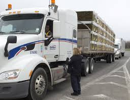 Seeking Trailer Canada U S Sets Tariffs For Canadian Softwood Lumber Wsj