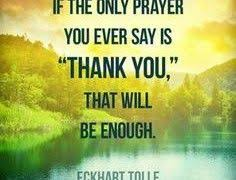 Thanksgiving Quotes Love 378 Best Thanksgiving Quotes Images On Pinterest Thanksgiving