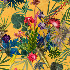 exotic tropical statement wallpaper for interior decor by gillian