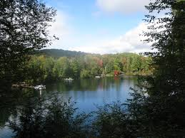 Cottages For Sale Muskoka by Loon Lake Kearney Homes U0026 Cottages For Sale 705 783 9366