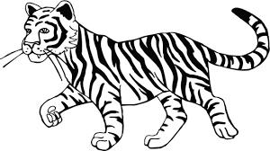 black and white tiger clipart clip library clipartix
