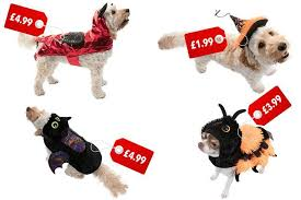 b u0026m is selling spooky halloween costumes for dogs with prices