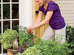 reasons to grow your own vegetables southern living