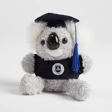 graduation bears graduation bears small koala deakin shop