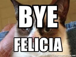 Angry Cat Meme Generator - bye felicia angry cat meme meme generator