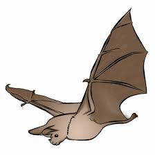 Bat Drawings For Halloween by Halloween Bat Clipart Clipartfest Clipartbarn