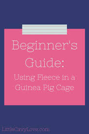 Guinea Pig Cages Cheap Get 20 Guinea Pig Bedding Ideas On Pinterest Without Signing Up