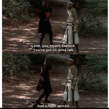 74 best monty python and the holy grail images on pinterest