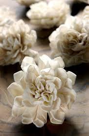 sola flowers folded sola flowers 2in