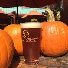 Dogfish Pumpkin Ale by All The Pumpkin Beers Actually Worth Trying This Fall Junk Host